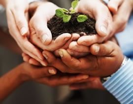 SUSTAINABILITY CONSULTING